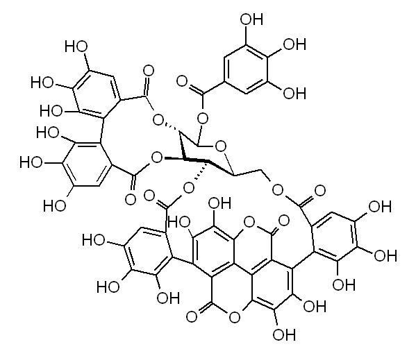 1-alpha-O-Galloylpunicalagin