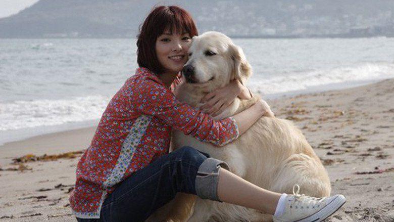 10 Promises to My Dog movie scenes