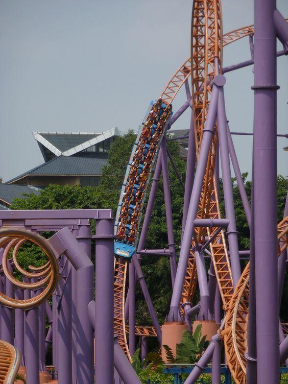 10 Inversion Roller Coaster Pinterest The world39s catalog of ideas