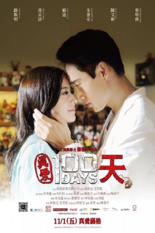 100 Days (2013 film) movie poster