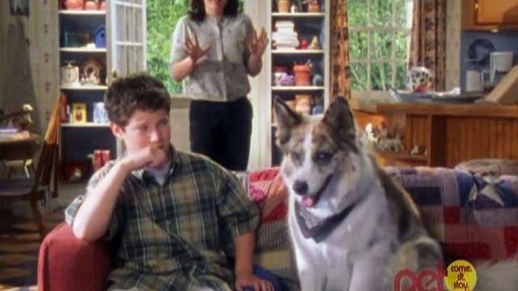100 Deeds for Eddie McDowd 100 Deeds For Eddie McDowd Season 1 Episode 2 Dog Gone Video