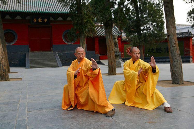 103-form Yang family tai chi chuan