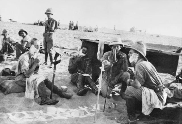 10th Light Horse Regiment (Australia)