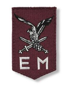 11th Airmobile Brigade (Netherlands)