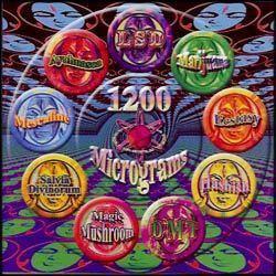 1200 Micrograms 1200 Micrograms album Wikipedia