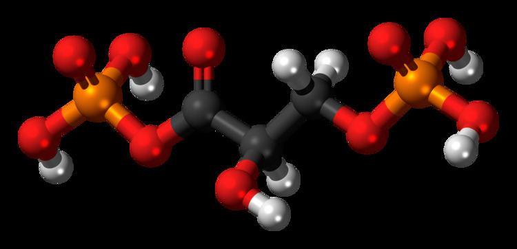 1,3-Bisphosphoglyceric acid 13Bisphosphoglyceric acid Wikiwand