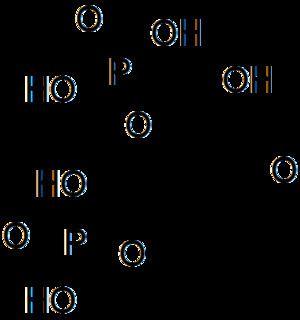 1,3-Bisphosphoglyceric acid 23 Wikiwand