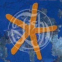 13th Star httpsuploadwikimediaorgwikipediaenthumbd