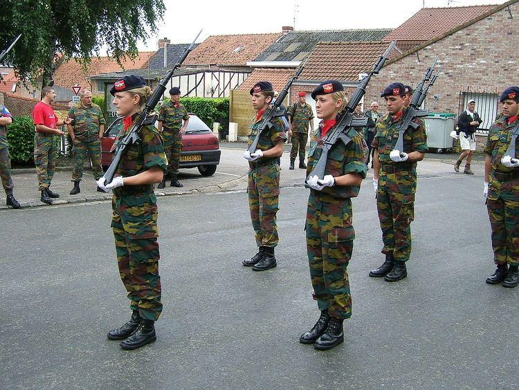 14th Air Defence Artillery Regiment (Belgium)