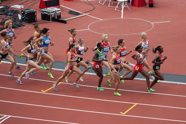 1500 metres at the Olympics