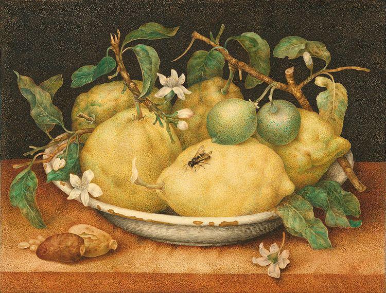 1640 in art