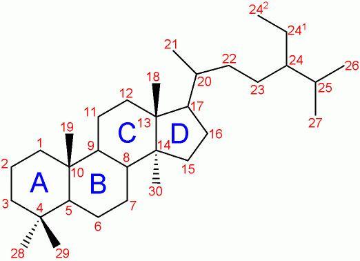 17-Ketosteroid