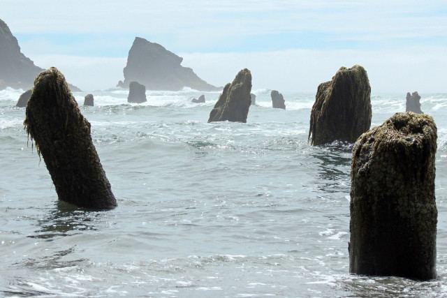 1700 Cascadia earthquake Science Proves 1700 Cascadia Earthquake Happened And Why Oregon