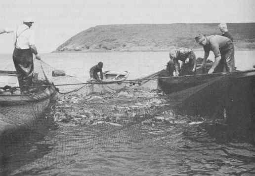 1775 Newfoundland hurricane Canadian Disasters Newfoundland39s Hurricane of 1775 InfoBarrel