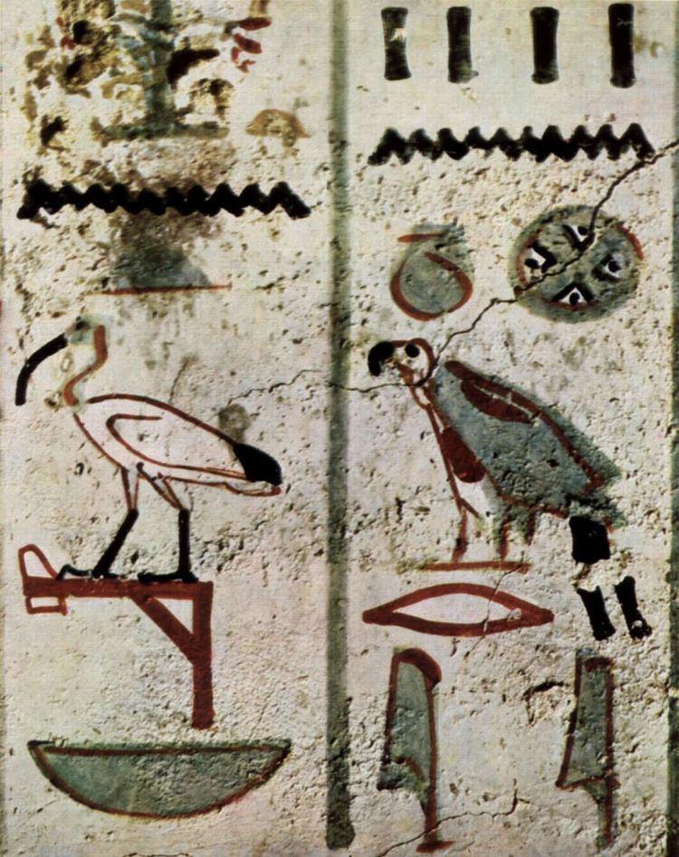 1805 in birding and ornithology