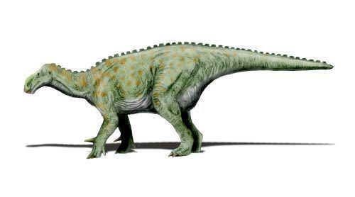 1825 in paleontology