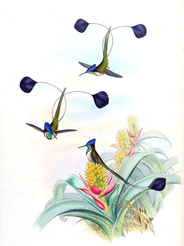 1835 in birding and ornithology