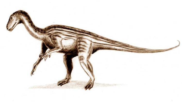 1836 in paleontology