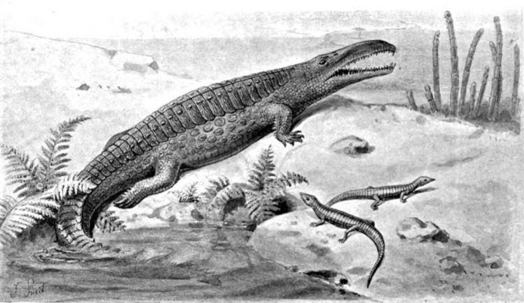 1842 in paleontology