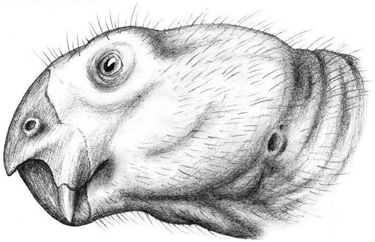 1845 in paleontology
