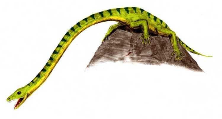 1855 in paleontology