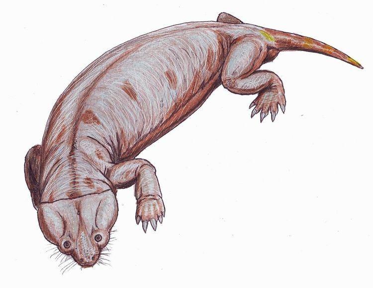 1876 in paleontology
