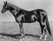 1880 Kentucky Derby
