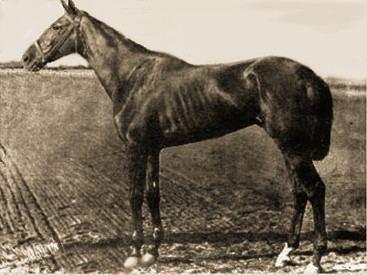 1881 Kentucky Derby