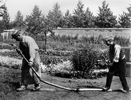 1895 in film