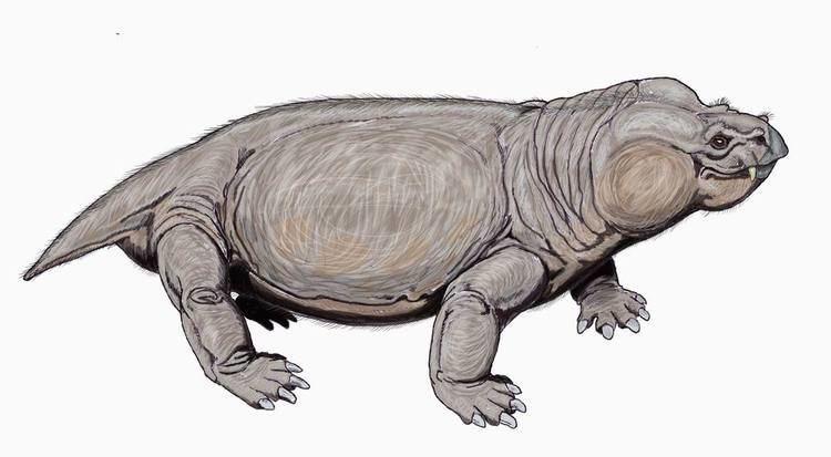 1898 in paleontology