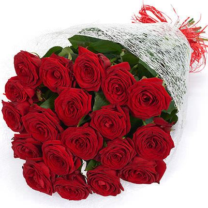 19 Red Roses 19 red Roses buy 19 red Roses order home delivery Price photos