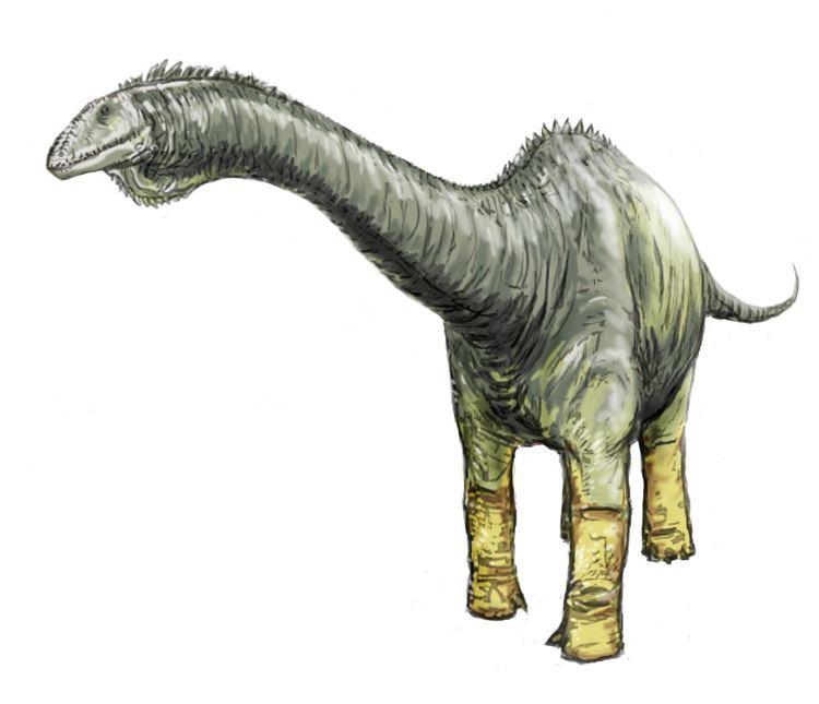 1903 in paleontology