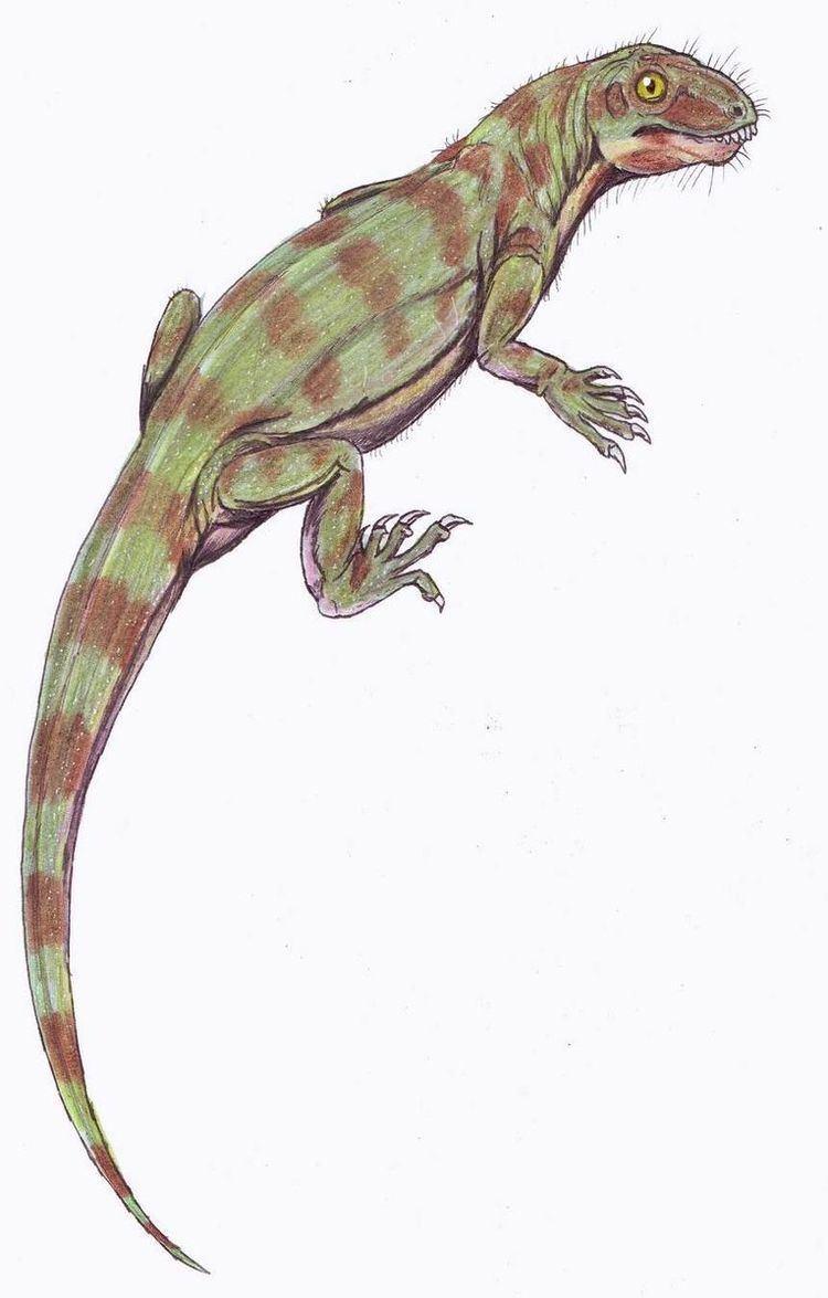 1907 in paleontology