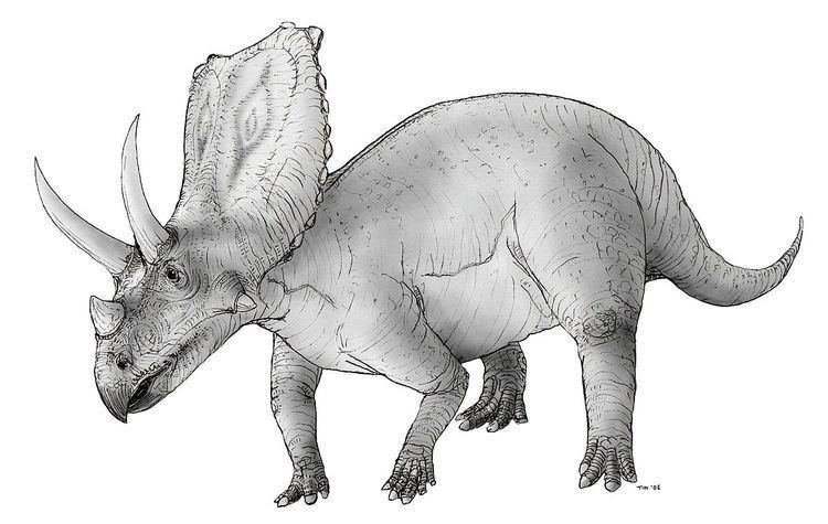 1914 in paleontology