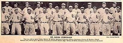 1914 St. Louis Terriers season