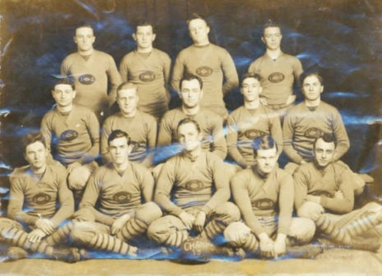 1915 LSU Tigers football team