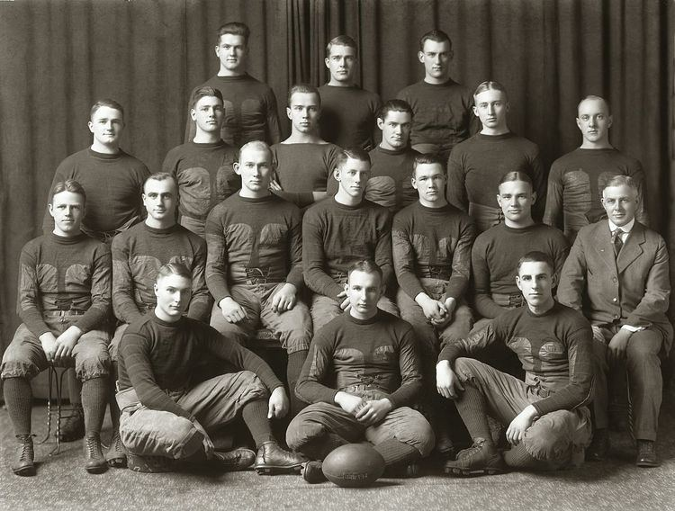 1917 Michigan Wolverines football team