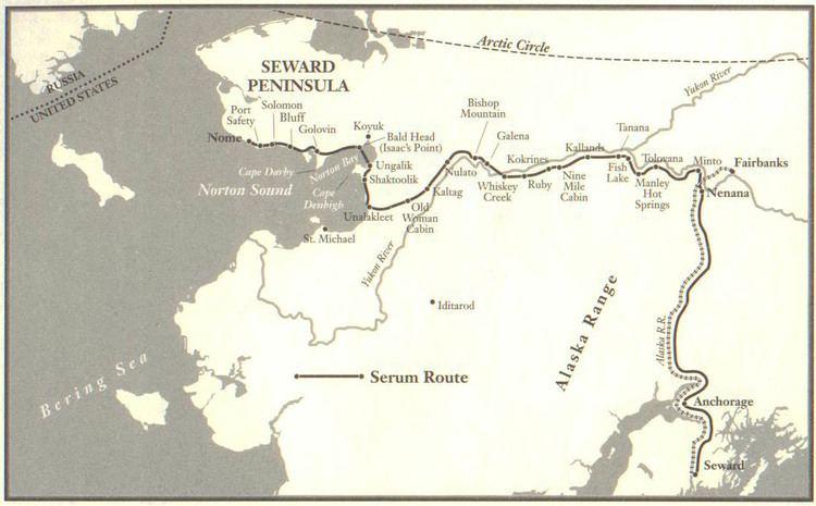 1925 serum run to Nome Iditarod Trail 1925 The Serum Run Brie It39s What39s For Breakfast