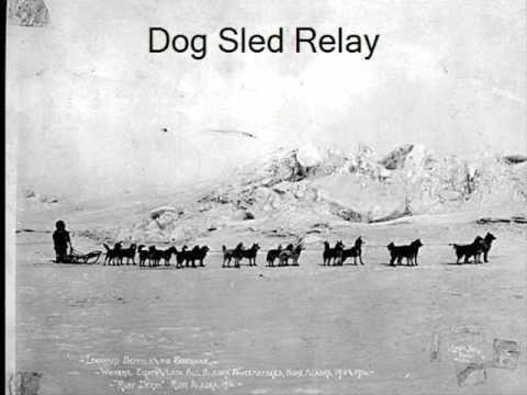 1925 serum run to Nome 1925 serum run to nome YouTube