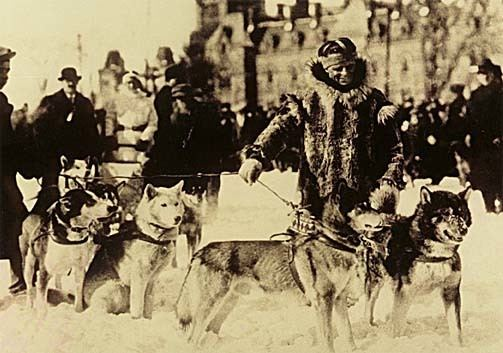 1925 serum run to Nome Iditarod Trail 1925 The Serum Run Conclusion Brie It39s What39s