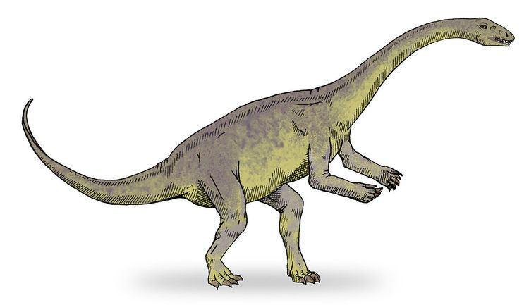 1941 in paleontology