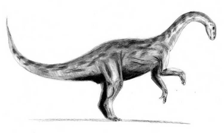 1942 in paleontology