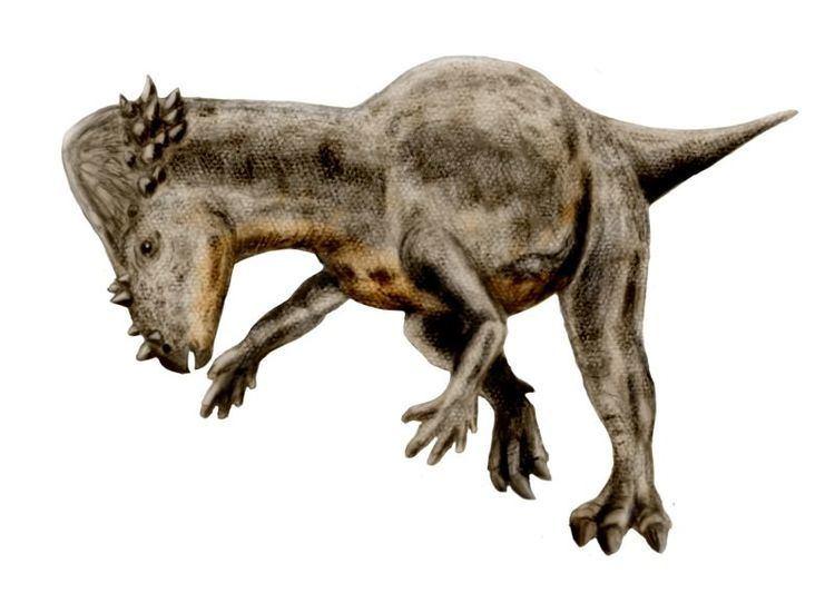 1943 in paleontology