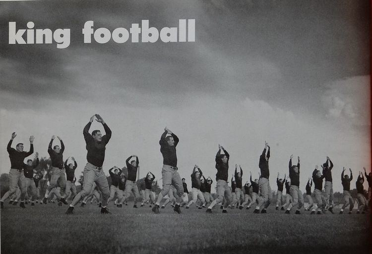 1947 Michigan Wolverines football team