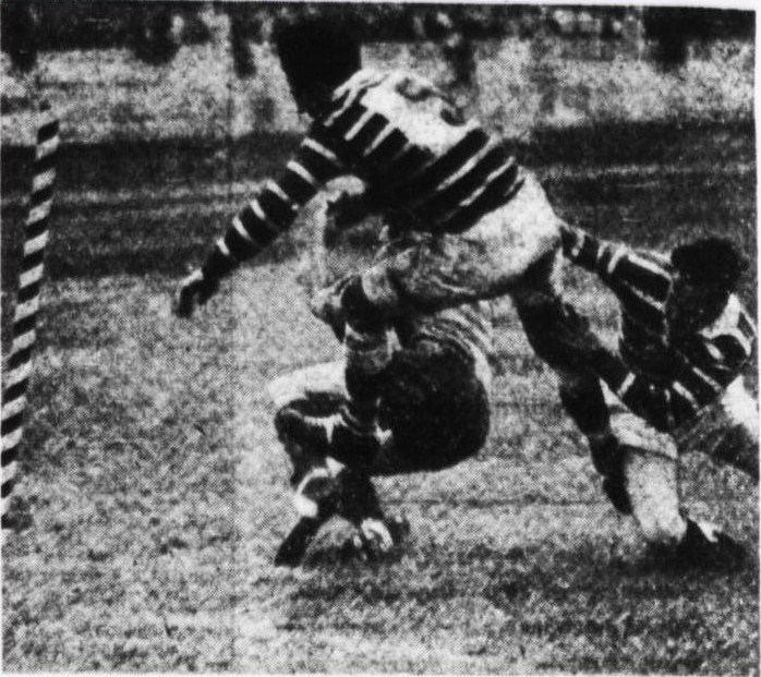 1951 NSWRFL season