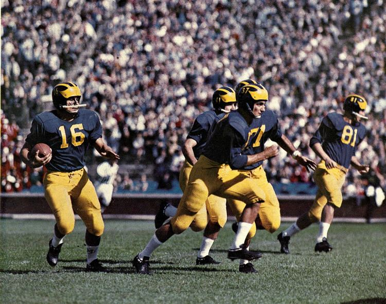 1959 Michigan Wolverines football team