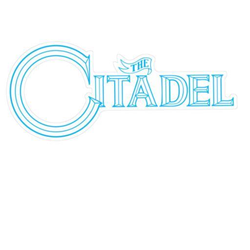 1960 The Citadel Bulldogs football team