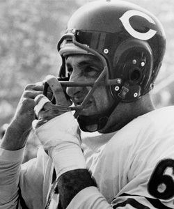 1963 Chicago Bears season Bears defeat Rams 5214 in 1963 season