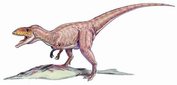 1964 in paleontology