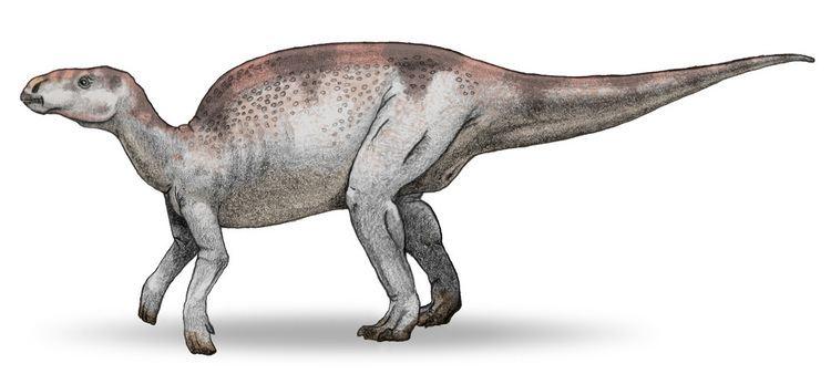 1966 in paleontology